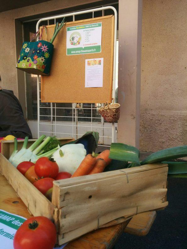 Forum des associations - Panier Légumes
